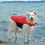 Trixie kamizelka ratunkowa dla psa - M
