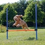 Trixie agility stacjonarka dla psa - 123x115cm