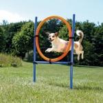 Trixie agility obręcz do skoków dla psa - 115x65cm