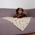 Trixie Lingo koc dla psa - 75x50cm