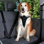 Trixie Dog Protect szelki samochodowe  dla psa - L